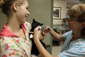 Cat's need their nails trimmed too! Dr. Ward trims a cat's nails as Victoria gives it a comforting cuddle.